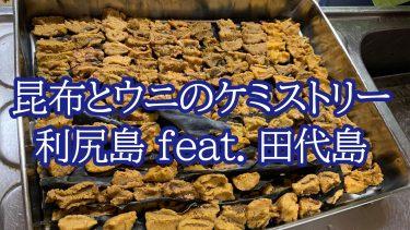 昆布とウニのケミストリー 利尻島 feat. 田代島